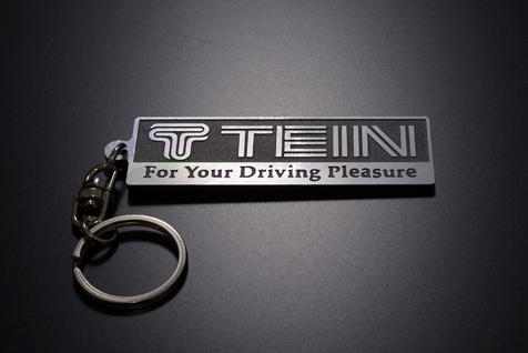 TEIN LOGO PLATE KEY CHAIN picture2